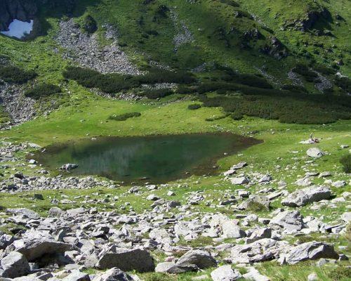 Optimized-Románia Radnai-hegység 2006 07.14-22. 218 (1)