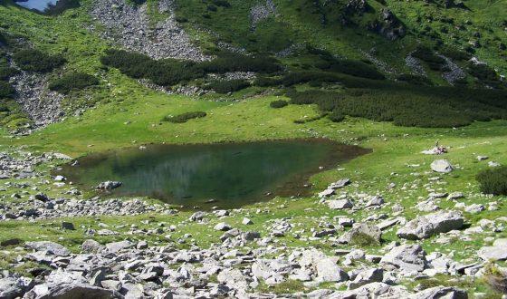 Optimized-Románia Radnai-hegység 2006 07.14-22. 218